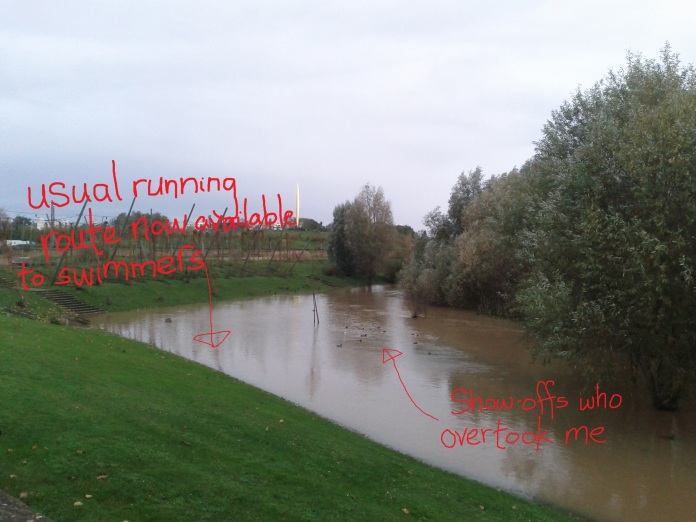 runningorswimming